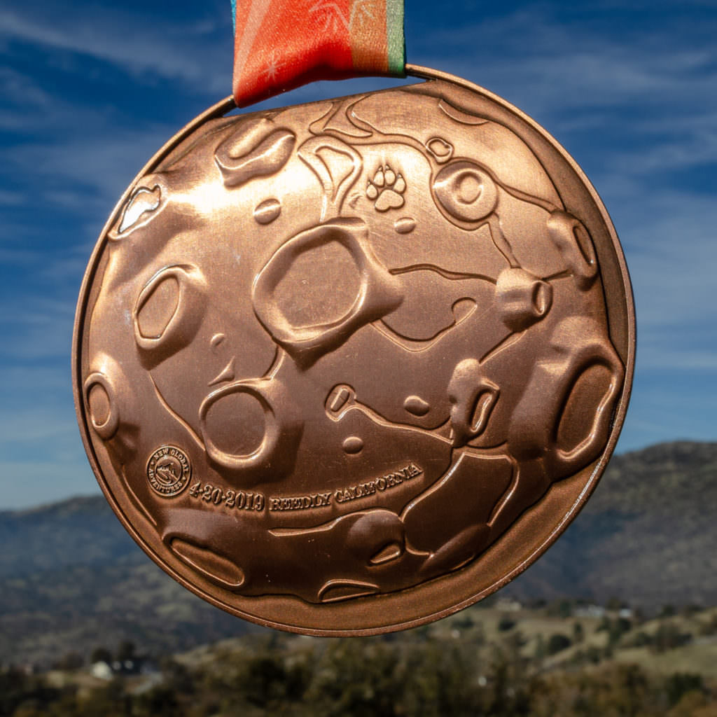 2019 Medal Back